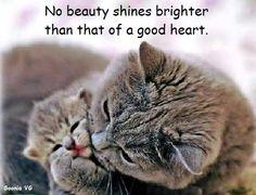 No beauty...
