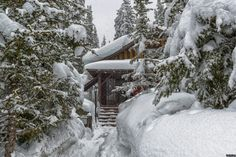 Cabins In The Woods, February, Backgrounds, Wallpapers, Outdoor, Design, Background Pics, Outdoors, Wallpaper