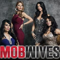 """Mob wives: Is one of my favorite shows.  I do spend a lot of time watching """"My Shows"""" when I do have free time thanks to my DVR.  This show is part of the """"Jersey"""" sensation.  It takes place in Jersey and Rhode Island and is FULL of juicy drama.  The women often act like the cast from Jersey Shore, their tan, loud, drama-filled, and worried about body image.  They have received a lot of scrutiny for creating a Jersey Stereotype and ruining the worlds outcome of people from Jersey."""