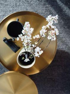 Rivet coffee table in brass