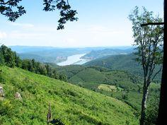 A legszebb erdők Magyarországon/Beautiful forests in Hungary Beautiful Forest, Guam, Forests, Hungary, Mountains, Amazing, Nature, Travel, Voyage