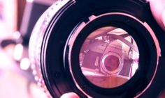 ten tips for great macro photography