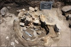 Cornell University claim evidence for a number of divination techniques in use  at Armenian Bronze Age shrines.