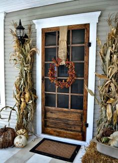 shabby chic reclaimed wood front door. Corn stalks, white pumpkins