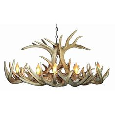 Loon Peak Doliya Antler Whitetail Oblong 8-Light Candle-Style Chandelier Finish: Rustic Bronze/Natural Brown, Shade Color: Rawhide, Shade Included:...