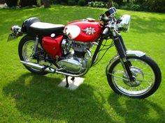 1966 BSA A65 Spitfire Mk2 Classic Motorcycle Pictures