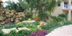 Tropical Landscaping Ideas For Front Yard 2014 : Tropical . Tropical Garden Design, Tropical Backyard, Tropical Landscaping, Landscaping With Rocks, Tropical Plants, Front Yard Landscaping, Tropical Gardens, Landscaping Ideas, Succulent Landscaping