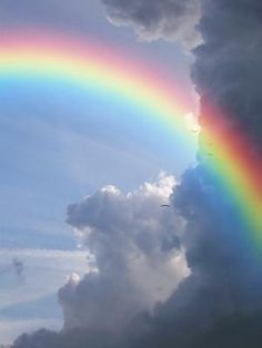 I set My rainbow in the cloud, and it shall be for the sign of the covenant between Me and the earth. Genesis 9:13