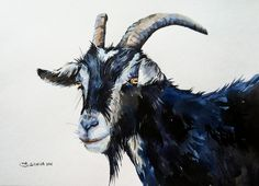 White&Black Goat Portrait Farm Animal Original Watercolor Painting by alisiasilverART on Etsy