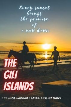 The Gili Islands are a group of 3 tiny islands – Gili Trawangan, Gili Meno and Gili Air – in Indonesia, near the coast of northwest Lombok Island. Characterized by sandy beaches fringed with palm trees, they're known for their coral reefs just offshore. . #lombok #indonesia #travel #traveling #giliislands #island #nature #bucketlist Travel Images, Travel Pictures, Cool Pictures, Travel Deals, Travel Tips, Adventure Time, Adventure Travel, Places To Travel, Travel Destinations