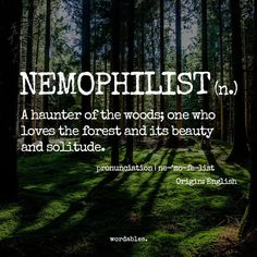 """The etymology is from a Greek word meaning wooded pasture or glade.  There is also adjectives nemorivagant (""""wandering in woods"""") and nemorose (""""full of woods"""") and nemorous (""""woody"""" - dating to 1623)."""