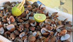 Dégustation de fruits de mer à La Marée