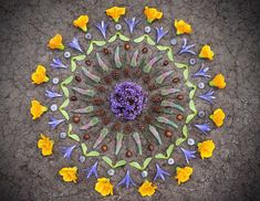 This Artist Got Over His Breakup By Making Gorgeous Artwork Out Of Nature Getting Over Him, Get Over It, Lily, Crafty, Altars, Spring, Artist, Artwork, Nature