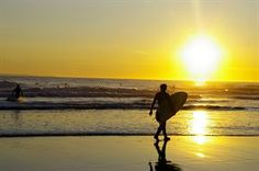 Surfer's Paradise is heaven for campers