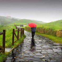 """Rezeki dalam hujan..berdo'alah banyak-banyaknketika turun hujan...  Mengingatkan kembali  الحمدالله الذي بنعمته تتم الصالحات  Saudara/i fillah...... Pagi-pagi Allah kembali tambahkan rizkinya bagi kita. Semoga menjadi penyebab bertambahnya Iman dan amal kita. Yo jangan lupa ikuti petunjuk Rosulullah shalallahu 'alaihi wasallam saat hujan tiba.   1. Doa Ketika mendung dan langit diselimuti awan hitam  اللهم إني أعوذs بك من شر ما فيه  Allohumma innii a'uudzu bika min syarri maa fiihi  """"Ya…"""