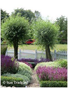 Isas Trädgård: Inspiration från Jansro ! The Constant Gardener, Pergola, Conservatory, Scandinavian Style, Garden Inspiration, Garden Ideas, Beautiful Gardens, Garden Design, Home And Garden