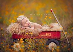 little flower by lisa_holloway