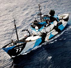 Whale Wars-Sea Shepherd