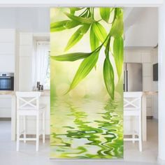 Raumteiler - Green Ambiance I Deco Disney, Kokoon Design, Plexiglass, Room Divider Curtain, Plant Leaves, Curtains, Plants, Support, Screens