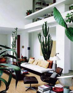 Een woonkamer met metershoge cactussen - Roomed | roomed.nl