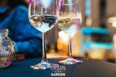 Fancy Drinks, Urban City, White Wine, Wine Glass, Alcoholic Drinks, Garden, Garten, Lawn And Garden, White Wines