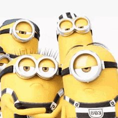The perfect Minions DespicableMe Animated GIF for your conversation. Discover and Share the best GIFs on Tenor. Minion Gif, Cute Minions, Minion Party, Happy Minions, Happy Birthday Minions, Images Emoji, Minions Images, Minion Pictures, Minions Quotes