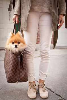 2017 Latest #Louis #Vuitton #Bags For Styling Tips, Pay Western Union Get 10% Discount, Buy More Discount More, Shop Now! #Louis #Vuitton #Handbags