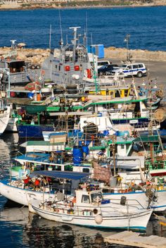 Boats in Paphos Harbour, Cyprus Cyprus Paphos, Over The Hill, Beautiful Scenery, Aphrodite, Greek Islands, Fishing Boats, New York Skyline, Birth, Cyprus