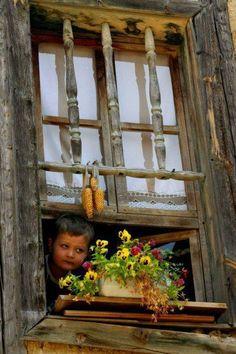 407 fantastiche immagini in someone at the window su - Fioriere per davanzale finestra ...