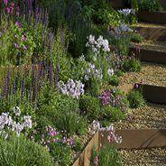 Ogród na Pierwszego kontakt w St George