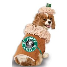 Your dog will be the cutest one dressed up for Halloween this year! DIY or buy a dog Halloween costume! Best Dog Halloween Costumes, Cute Dog Costumes, Puppy Costume, Animal Costumes, Small Dog Costumes, Halloween Halloween, Diy Cat Costume, Costume Ideas, Amazing Costumes