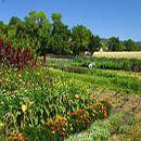 Preguntas y respuestas sobre Agricultura ecológica ecoagricultor.com