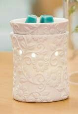 Flower vine warmer is simply stunning. https://essenceofbliss.scentsy.com.au/