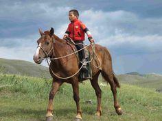 Mongolian horse boy