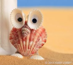 Sea Crafts, Nature Crafts, Crafts To Make, Crafts For Kids, Arts And Crafts, Seashell Projects, Driftwood Crafts, Seashell Art, Seashell Crafts