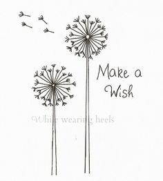 Make a wish..
