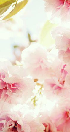 Floral lockscreen
