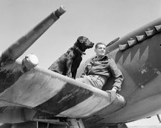 Wing Commander Johnnie Johnson, DSO and Two Bars, DFC and Bar, Royal Air Force, commanding No. 144 (Canadian) Wing, sitting on the wing of his Supermarine Spitfire Mark IX (MK392, a Castle Bromley-built Spitfire) with his Labrador Retriever, Sally, at Bazenville, Normandy, 31 July 1944. (Pilot Officer Saidman, RAF Official Photographer/Imperial War Museum)