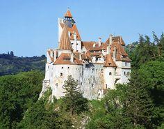 Count Vladimir Dracula Castle