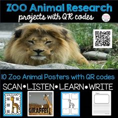 This zoo animal research non-fiction unit is a great way to implement informative writing and research skills in your class  In this unit students will: *Use animal posters to scan QR codes to watch videos about each animal. *Fill out graphic organizers with information they have learned in the videos. *Use the handwriting paper to write a report on the animal. *Use the mini book to record facts about the animal they learned about. *Write an informative research paper  **Also included is…