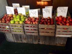 Apples by the pound - Hidden Valley Fruit Farm, Lebanon, Ohio