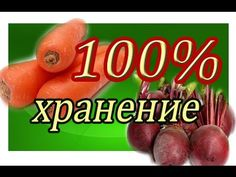 ХРАНЕНИЕ МОРКОВИ И СВЕКЛЫ 100% - YouTube Garden, Youtube, Garten, Gardens, Tuin, Yard