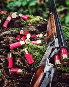 This is the official page of Gentleman Bobwhite, dedicated to the outdoor lifestyle and the pleasures of pursuing the gentleman of game birds: the bobwhite quail. Trap Shooting, Shooting Sports, Quail Hunting, Hunting Guns, Weapons Guns, Guns And Ammo, Wallpaper Arma, Kalashnikov Rifle, Scout Rifle