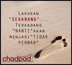 Chadpad Bag Organizer - Google+
