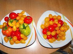 Tomatenpflanzen: Was Beachten? Hilfreiche Tipps ? Tomaten | Tipps ... Tomaten Balkon Pflanzen Tipps