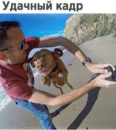 Сколько счастья на собачьем лице!