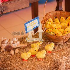 Festa galinha pintadinha menina, para o primeiro aninho da Luisa!   A festa Galinha Pintadinha rústica, está fazendo maior sucesso...primei...