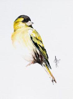 Andrzej Rabiega - Paintings for Sale Siskin, Bird Artwork, Paper Tags, Watercolor Bird, Rook, Paintings For Sale, Lovers Art, Pet Birds, Buy Art