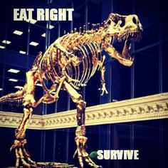 I thought it was a cool pic-and we do need to eat right to survive!