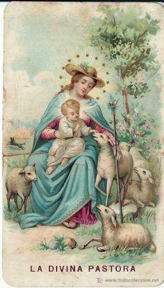 La Divina Pastora de las almas, redil de su Hijo.